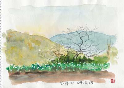 Syaga_sunao_web